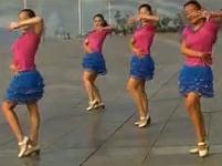 紫玫瑰广场舞 真的不容易 舞曲歌曲下载