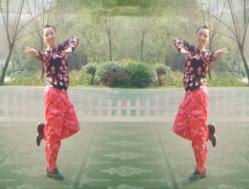 幸福天天广场舞凤凰涅槃 含舞动晨韵背面演示教学 健身操舞