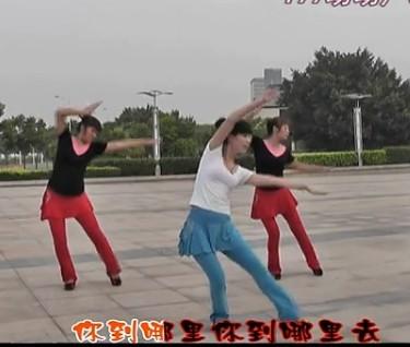 动动广场舞 泉水叮咚响 教学视频44315