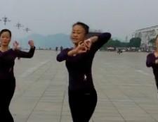 沅陵紫玫瑰廣場舞中華全家福舞曲下載