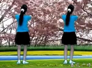 春花廣場舞情在草原飛附口令及背面視頻舞曲下載