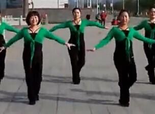 紫玫瑰广场舞一曲相送中老年简单广场舞下载