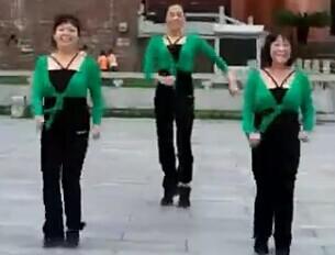 紫玫瑰广场舞跟我出发最新中老年广场舞舞曲视频下载
