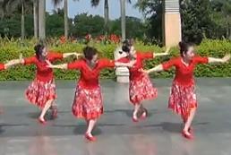 紫玫瑰广场舞欢乐的海洋 含背面演示 音乐MP3免费下载