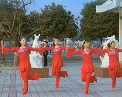 青馨明月廣場舞新年喜洋洋 編舞立華 簡單好看廣場舞