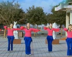 廣場舞今年最特別 青馨明月廣場舞 編舞格格 簡單中老年廣場舞
