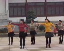 俪影广场舞两个人 广场舞歌曲音乐mp3免费下载