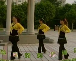 青馨明月廣場舞蝴蝶不懂花的淚 簡單健身時尚廣場舞