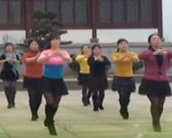 俪影广场舞羊羊得意 时尚减肥健身广场舞