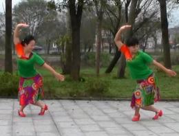 安徽池州舞之美广场舞草原祝酒歌正面背面演示教学