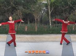 西湖莉莉广场舞光明教学视频下载 汪峰《光明》歌词MP3下载