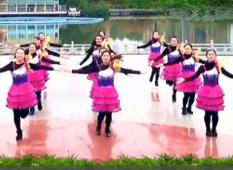 青山青廣場舞跟我一起跳隊形版 美會眉飛色舞隊16人變隊形表演