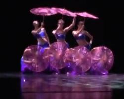 傣族舞《傣家的女儿傣家的雨》上海歌舞团 民族舞大全