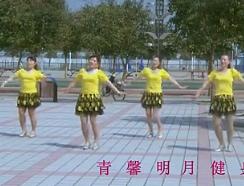 青馨明月廣場舞女神我的愛 編舞波波 熱情動感的中老年廣場舞