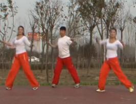 龍都舞動晨韻健身操冬天里的一把火演示教學 2015最新原創有氧健身操