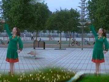 肥礦集團青馨明月廣場舞草原春天美 個人版 編舞立華