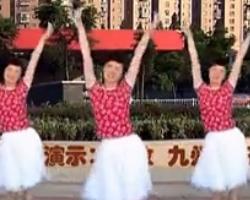 惠汝广场舞九妹情歌 最新中老年广场舞动作分解教学