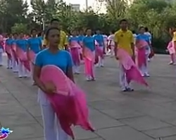 鸡西兴凯舞艺扇子舞 12草原情哥哥 扇子舞超清视频音乐mp3免费下载