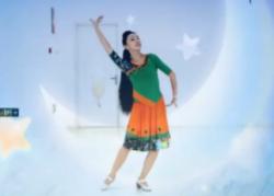 ?#26412;?#33402;莞儿广场舞月亮含教学 傣族舞 韩红《月亮》歌词MP3免费下载