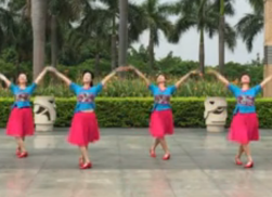 阿中中广场舞美丽中国更美丽正反面含教学 厦门海之韵健身队团队正面演示