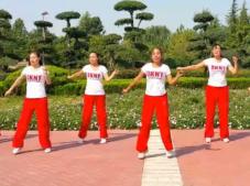 舞动旋律2007健身队广场舞阿拉伯之夜 健身步子舞