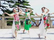 2016最新廣場舞-張春麗廣場舞旗袍美人 五朵金花2016年年度大舞