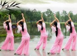 張春麗廣場舞一枝梅正面背面舞蹈視頻 云菲菲《一枝梅》歌詞mp3下載