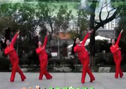 刘荣广场舞幸福来正面背面演示教学 热情欢快的中老年广场舞