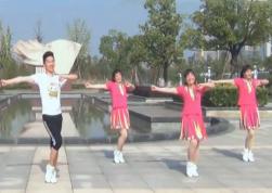 楠楠广场舞DJ爱情天堂含教学 简单大方的中老年广场舞