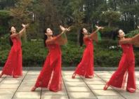 江西江财飞悦广场舞一枝梅 含廖弟教学和背面演示