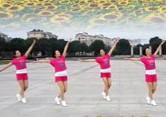 阿中中浙江梅锦广场舞快乐无极限正背面演示教学 时尚动感的中老年广场舞
