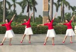 阿中中海之韻廣場舞陽光曲正背面演示教學 王麗達《陽光曲》歌詞MP3