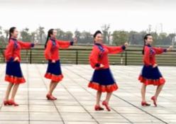 岩缝里盛开的花応子广场舞团队演示教学 応子携临川碧水蓝天舞队演示
