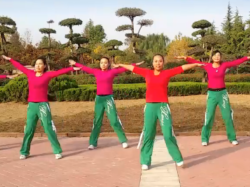 2016年新舞-舞动旋律2007健身队广场舞练武功含教学
