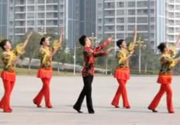 2016年广场舞-廖弟广场舞让祝福飞正面背面演示教学