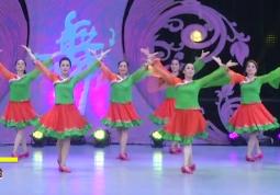 艺佳怡广场舞北京的金山上团队正面演示 云飞《北京的金山上》歌词MP3