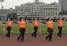西湖莉莉广场舞二十年后再相会正反面演示教学