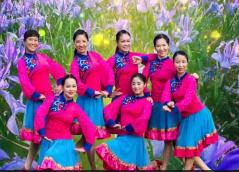 張春麗廣場舞馬蘭花舞蹈視頻 大方好看的中老年廣場舞