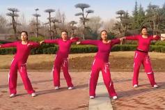 舞动旋律2007健身队广场舞换掉含教学 旧舞新跳 收腹健身操
