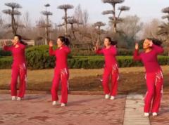 舞动旋律2007广场舞金鸡报晓正反面演示教学 2017年新年贺岁广场舞
