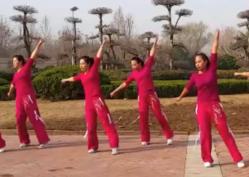 舞动旋律2007健身队广场舞十分钟正反面演示教学 爵士舞