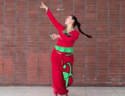 格格广场舞美丽乡村是我家正背面演示 个人版 2017年最新广场舞