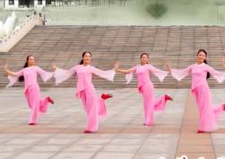 立華廣場舞愛如蓮花正背面含分解 山東桂花飄香立華明星隊廣場舞