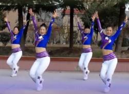 天姿广场舞舞动江苏正反面演示 热情动感的中老年广场舞