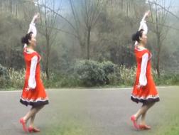 幸福天天广场舞梦回草原正反面含教学 简单大方的中老年广场舞