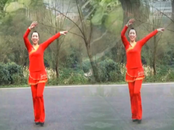 幸福天天广场舞花儿妹妹正背面含教学 成昊才让《花儿妹妹》歌词MP3下载