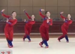 紫蝶踏歌广场舞新年大吉正面背面演示教学 2016年新年广场舞