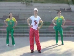 幸福天天广场舞DJ解药正面背面 含重庆叶子教学视频下载