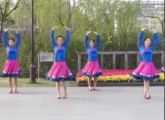 紫紫雨广场舞飞 正面背面演示 含紫蝶老师教学分解