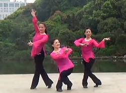 排舞桃花源含分解 温州排舞协会演示